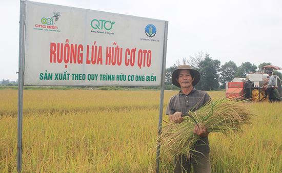 Nông nghiệp hữu cơ đang là một trong những lĩnh vực được Quảng Trị tập trung ưu tiên phát triển.